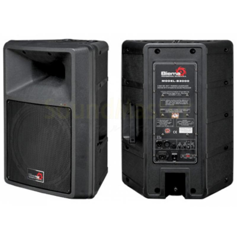 Аренда акустической системы Biema B3000B