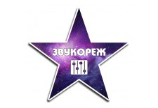 Услуги Звукорежиссера